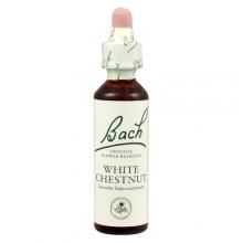 Bach flower remedy white chestnut 20ml bach flower remedy bach flower remedy white chestnut 20ml mightylinksfo